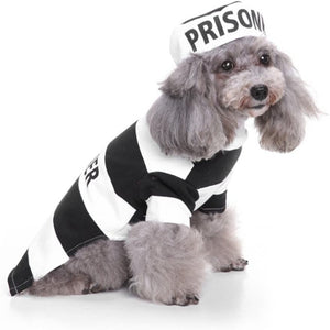 'MY PRISONER SUIT'