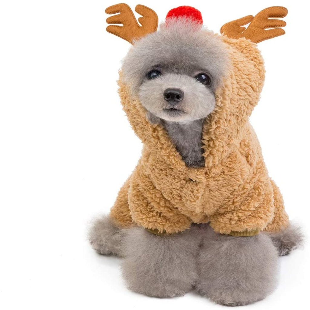'MY REDNOSED REINDEER SUIT'