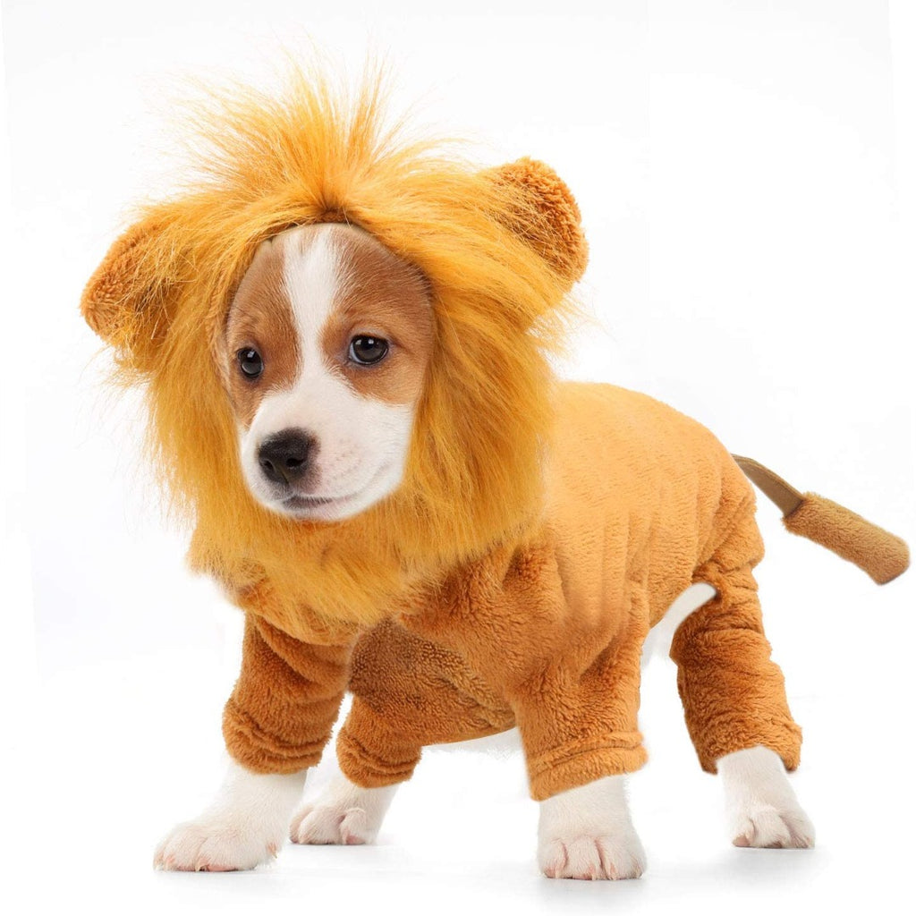 'MY MINI-LION SUIT'