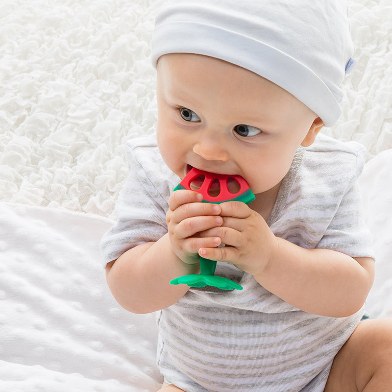Perry Mackin Silicone Teether - Watermelon