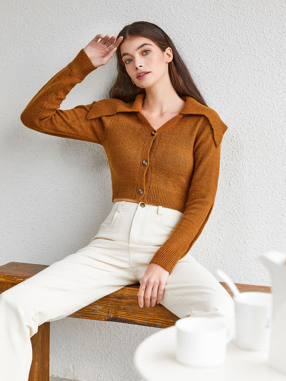 Large Lapel Cropped Sweater