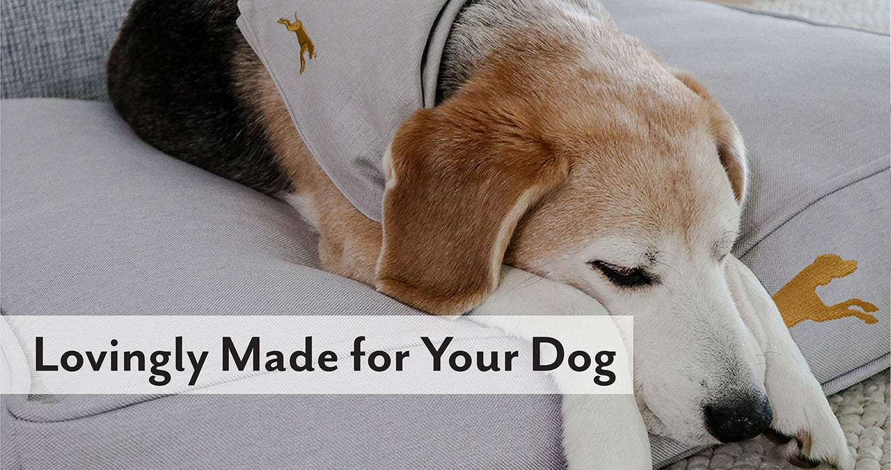 our-story-lovingly-made-for-your-dog-image