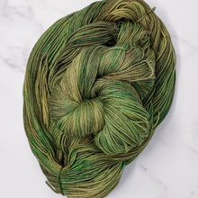 Load image into Gallery viewer, hand-dyed yarn in a variegated colorway of fully saturated shifting greens and browns