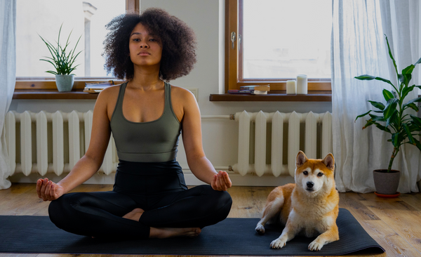 Why is better to start Yoga and Meditation as a hobby?