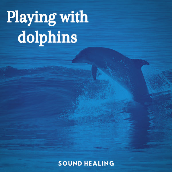 Playing with Dolphins - Zayra Mo