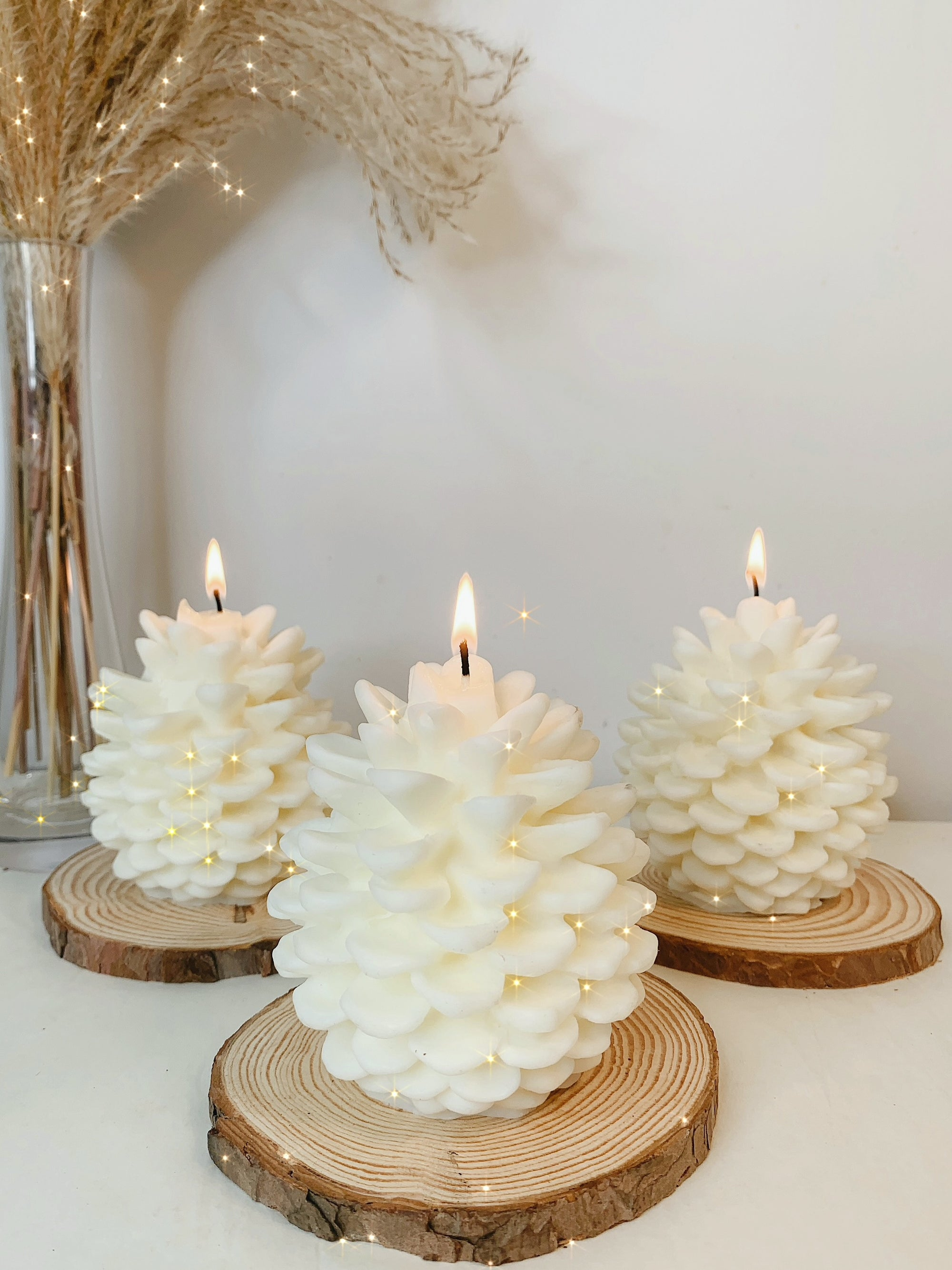 Anaïs Pinecone Candle Set