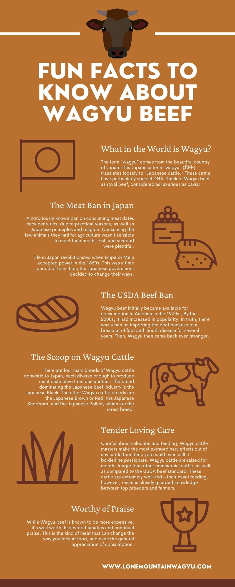 Facts About Wagyu Beef