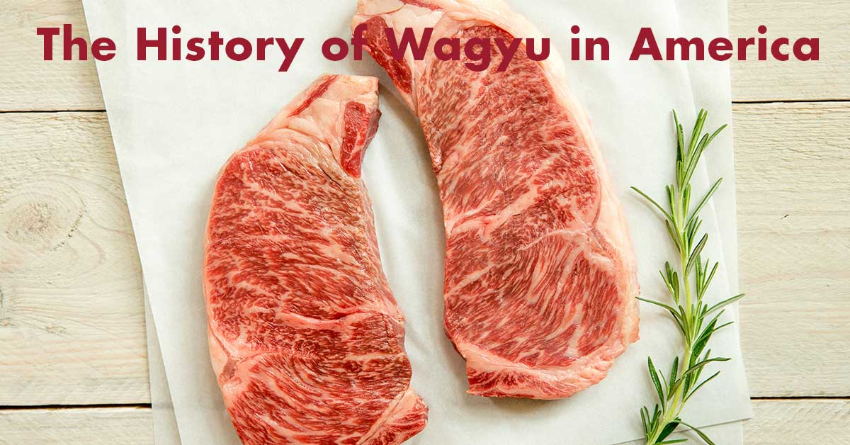 History of Wagyu in America
