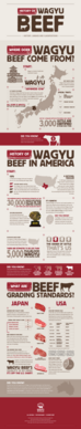 History of Wagyu Beef Infographic