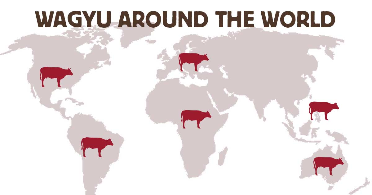 Map of Wagyu production across the globe