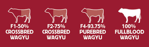 Classifications of Wagyu in the United States