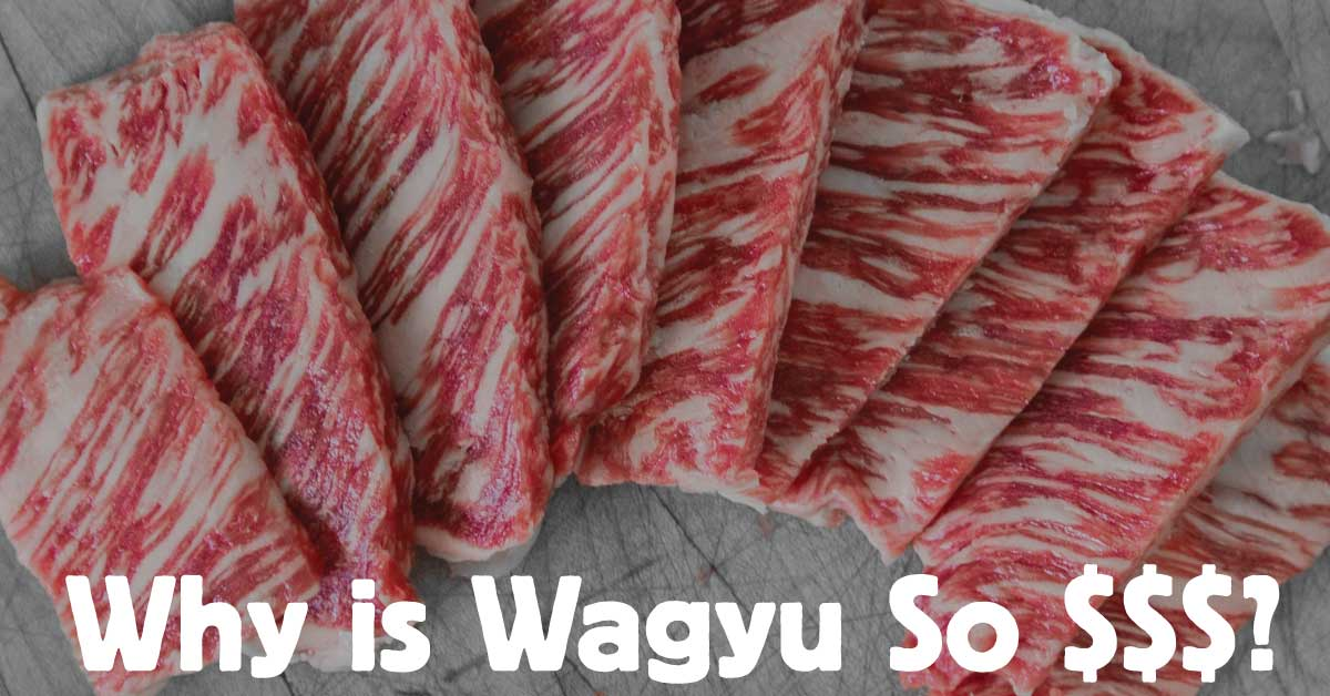 Why is Wagyu Beef So Expensive