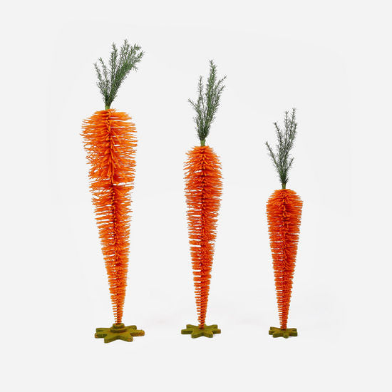 Standing Carrot Display