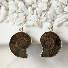 Load image into Gallery viewer, Ammonite and Sterling Silver Earrings
