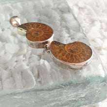 Load image into Gallery viewer, Ammonite Double Pendant