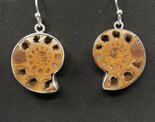 Load image into Gallery viewer, Ammonite and Sterling Silver Earrings  Light