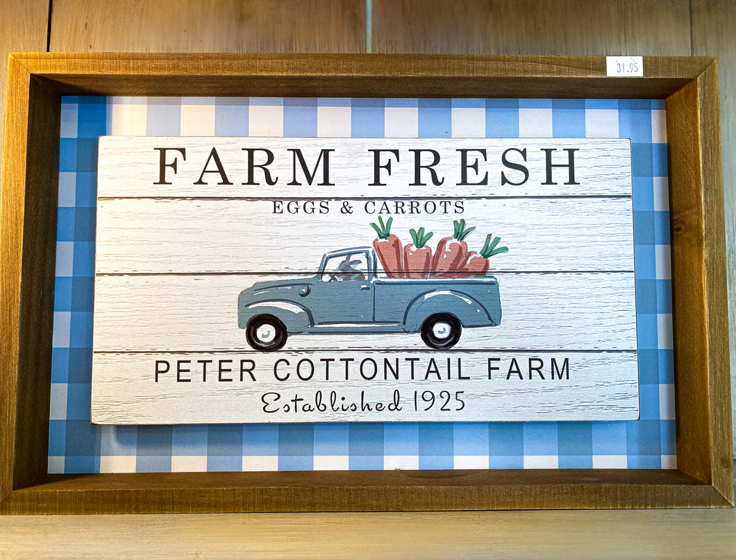 Farm Fresh Eggs & Carrots Shadowbox Wall Art