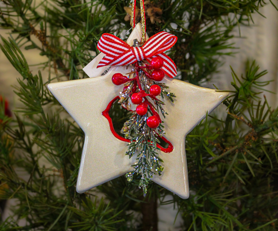 Red and White Star Christmas Ornament with a Cardinal Bird and Florals