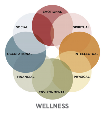 The 8 dimentions of wellness