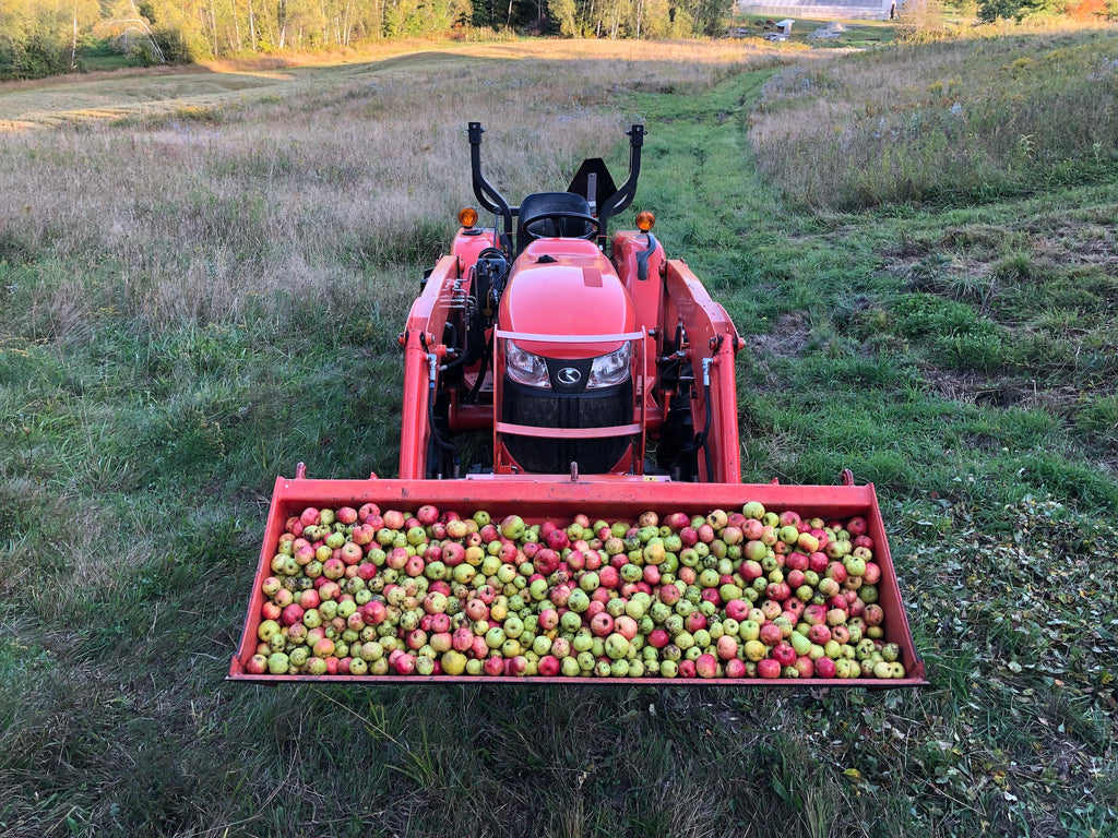 A red tractor is filled with freshly harvested wild apples.