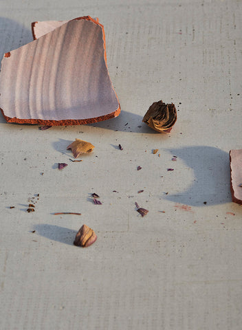 A closeup of a broken shard of terra cotta pottery and dried flower petals.