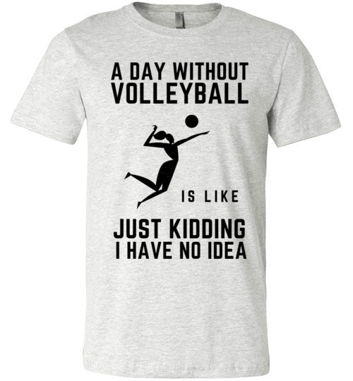 A Day Without Volleyball