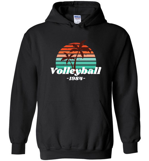 Volleyball 1984