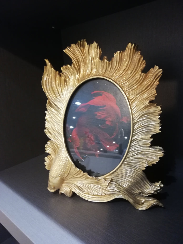 Enzo De Gasperi, Betta fish photo frame, gold, 28x20