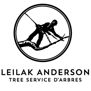 Leilak Anderson Tree Services