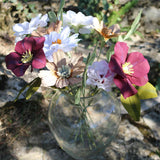 The Paradise Bouquet - Hellebores, cosmos, roses and carnations