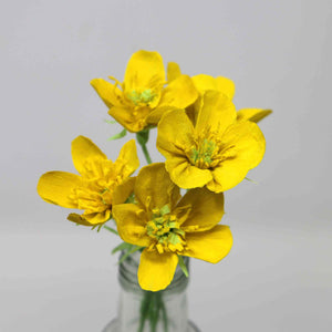 yellow paper buttercups