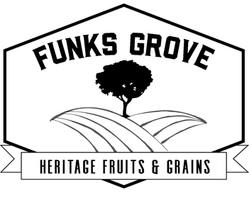 Funks Grove Stoneground Pancake Mix 8oz