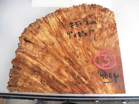 Australian #57 Peppercorn tree burl spalted -Raw Slices pieces - Sold singly