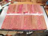 Australian #31 Palm tree Stabilised coloured - PEN blanks - Sold singly