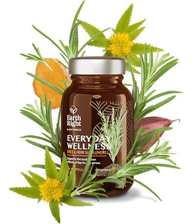Everyday Wellness supplement in sustainable glass bottle surrounded by ashwaghanda, holy basil, rosemary, turmeric, rhodiola rosea, and other wellness herbs and spices