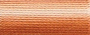 DMC Embroidery Floss - #105 Tan Brown, Variegated