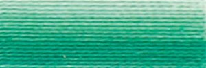 DMC Embroidery Floss - #125  Seafoam Green, Variegated