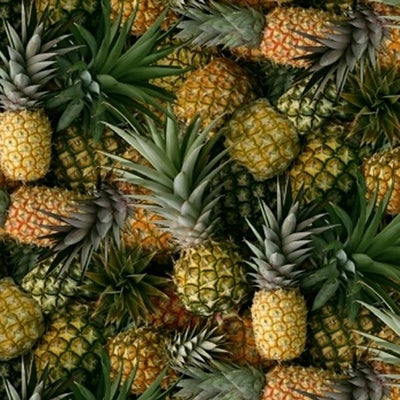 Windham - 51895D Pineapples