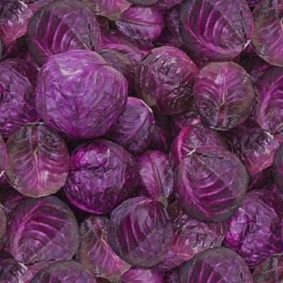 Windham - 51898D Cabbages