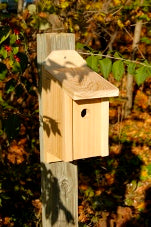 Wildlife Nest Boxes