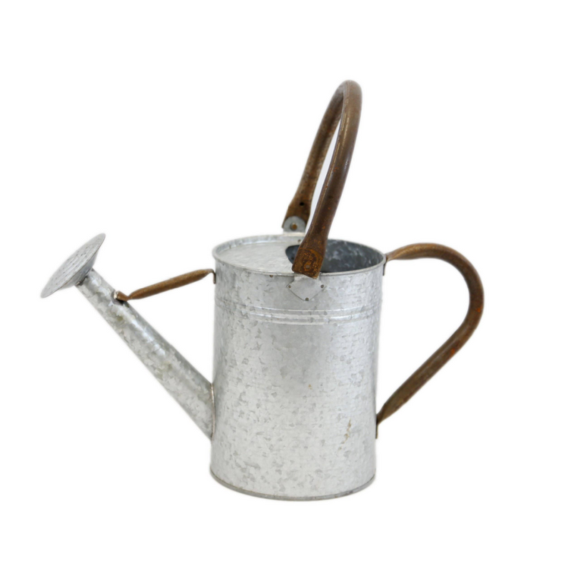 Rustic Oxidized Watering Can