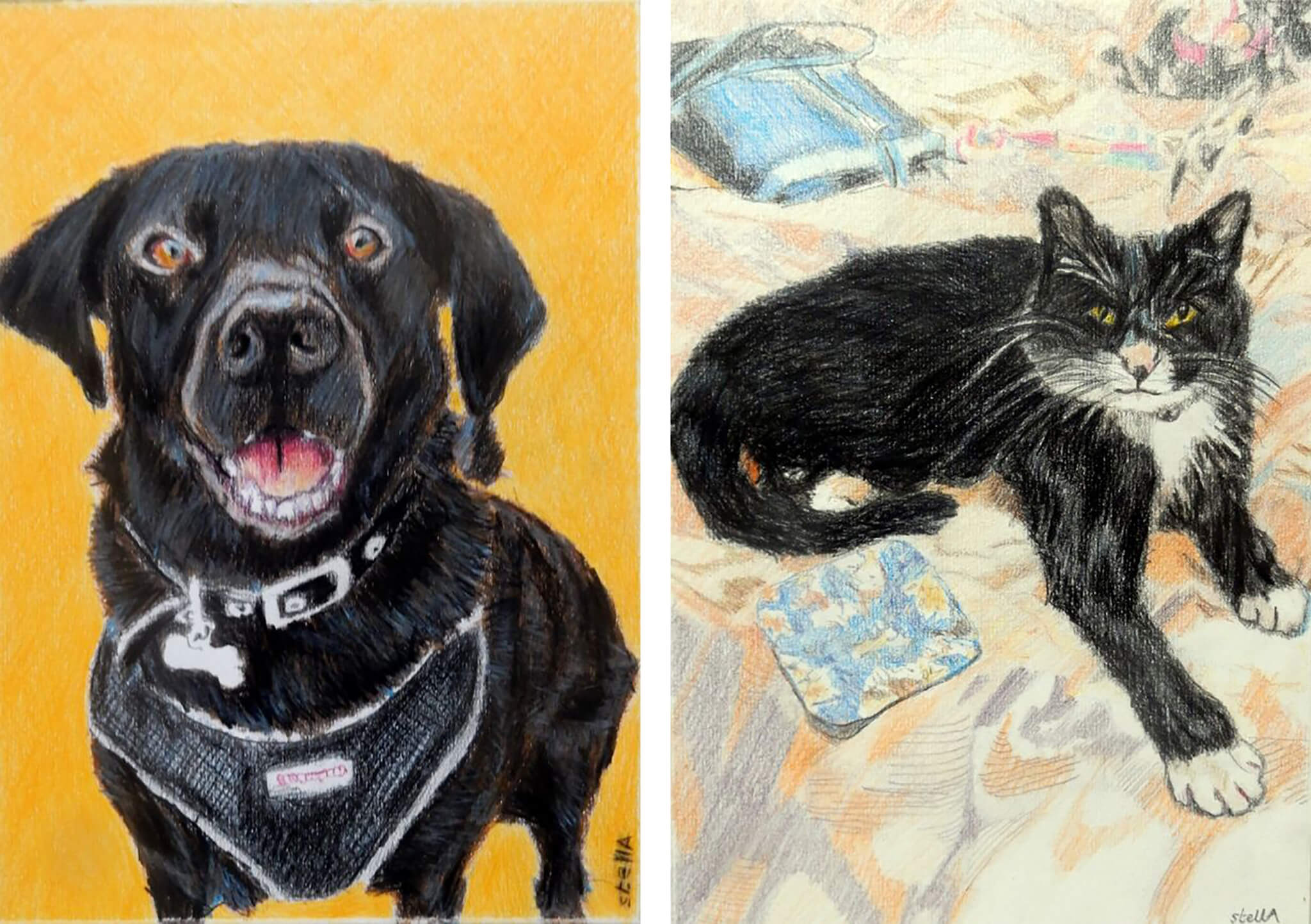 Pet Art Commissions by Stella Tooth