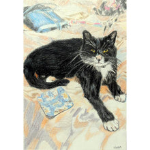 Load image into Gallery viewer, The Black and White Cat by Stella Tooth