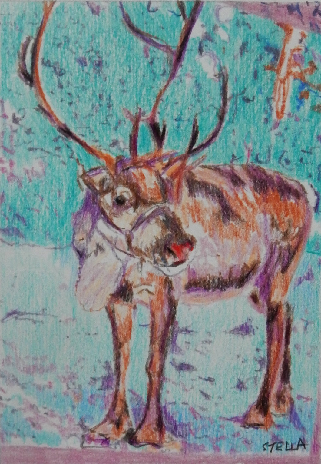 Rudolph the red nosed reindeer pencil on paper artwork by Stella Tooth