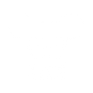 Blerd Domination Logo