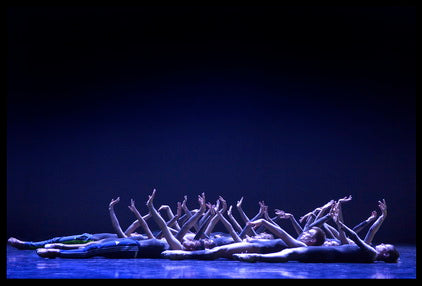 Performing Arts Series: White Swan #9 By Yossi Zwecker