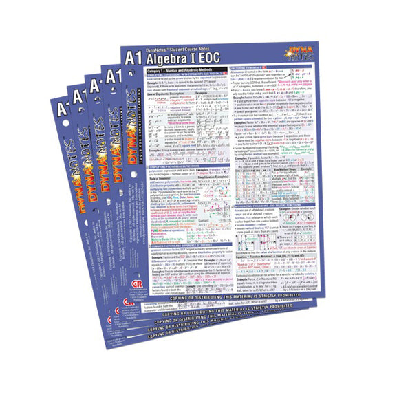 Algebra I Student Course Notes 10-Pack