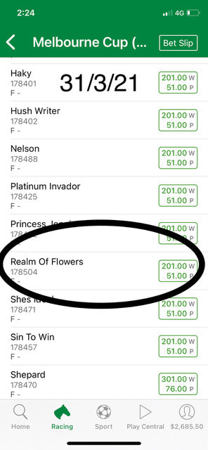 realm of flowers $201 odds