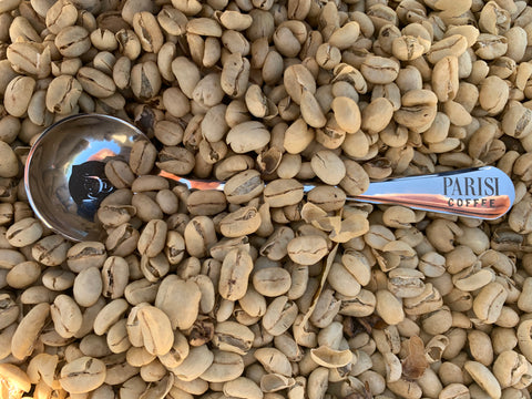 Parisi Coffee Cupping Spoon