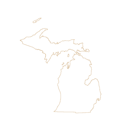State of Michigan outline vector